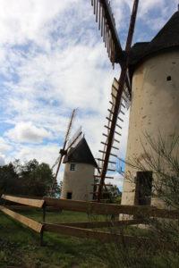 Moulins du Terrier Marteau